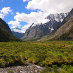 紐西蘭農村